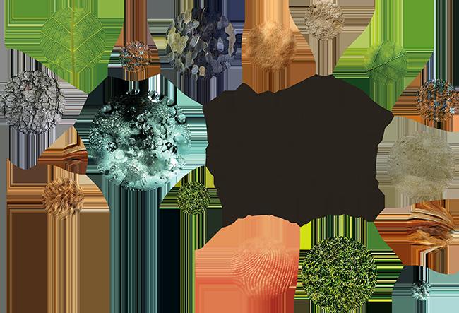 Naturwelten Steiermark